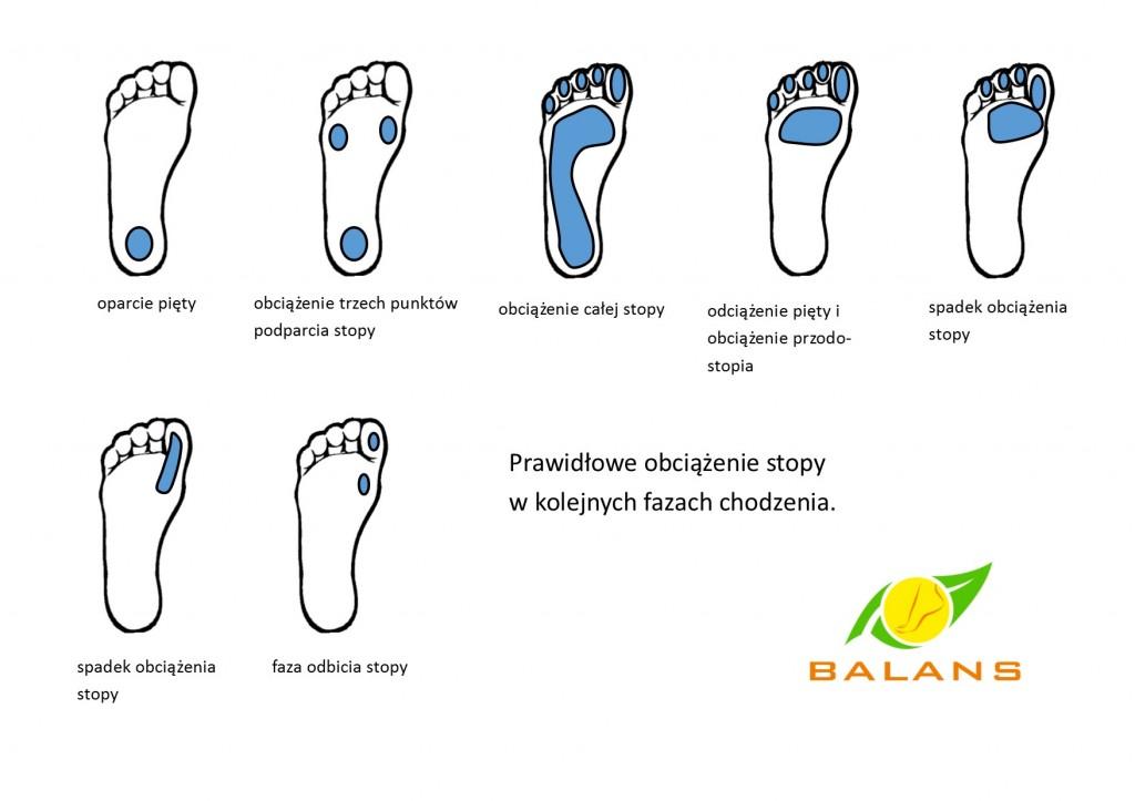 rozłożenie ciężaru w zdrowych stopach podczas faz chodzenia
