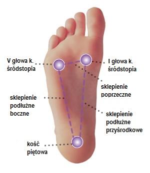 podparcie zdrowej stopy